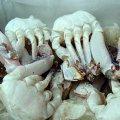 冷凍切り蟹1kg