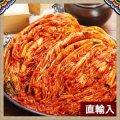 「直輸入」白菜キムチ 5kg