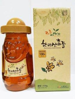 画像1: 眞蜂蜜(韓国済州島産)570g*12本「1box価格」